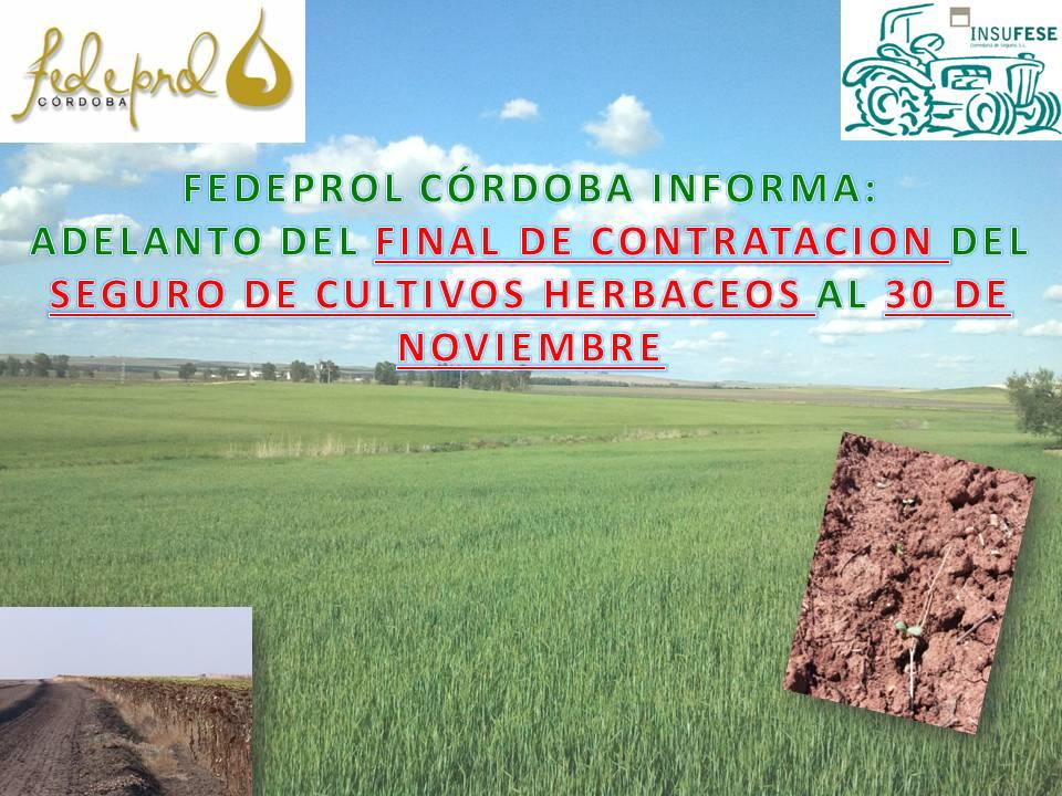 CONTRATACION SEGURO DE CULTIVOS HERBACEOS. CAMPAÑA 2014-2015