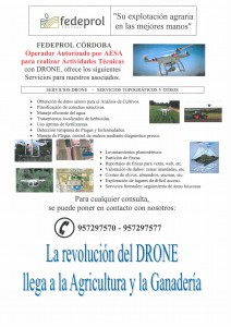 Servicios DRONE - 2